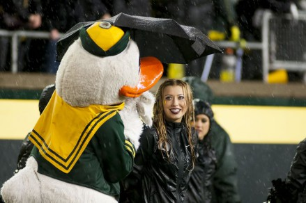 Photo Craig Strobeck Even with a wet and gloomy final four games to the season, the Duck provides shelter.